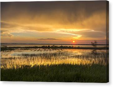 After The Rain Canvas Print by Debra and Dave Vanderlaan