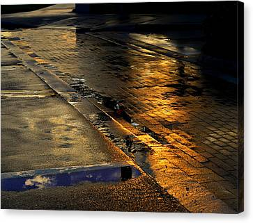 After The Rain Canvas Print by Laura Fasulo