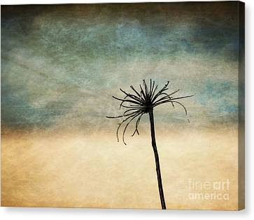 Canvas Print featuring the photograph After The Season by Vicki DeVico