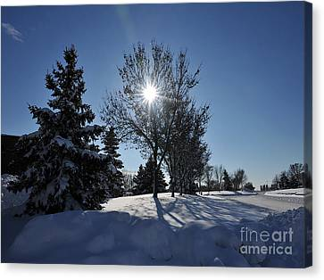 After The Snow 3 Canvas Print by Graham Taylor