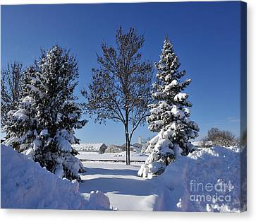 After The Snow Canvas Print by Graham Taylor