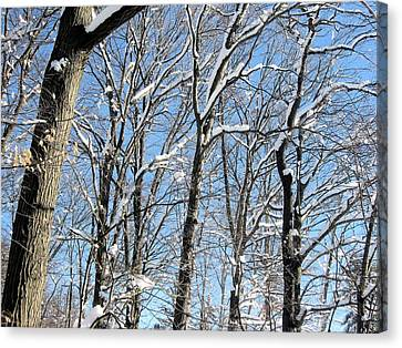 Canvas Print featuring the digital art After The Snowfall 1 by Dennis Lundell