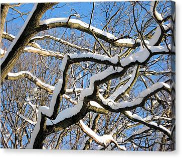 Canvas Print featuring the digital art After The Snowfall 2 by Dennis Lundell