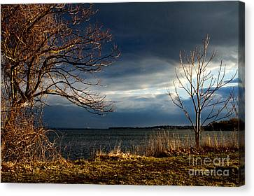 After The Storm  Canvas Print by A New Focus Photography