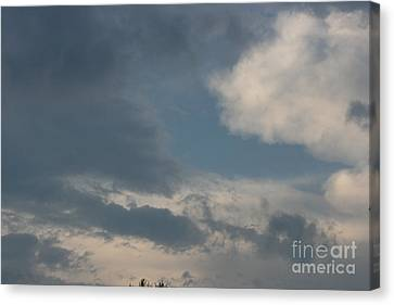 After The Storm Canvas Print by Barbara Bardzik
