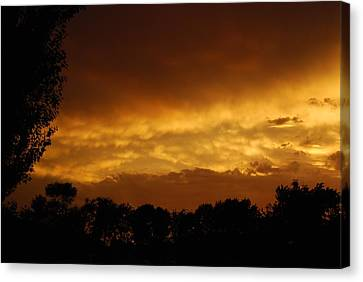 Canvas Print featuring the photograph After The Storm by Ramona Whiteaker