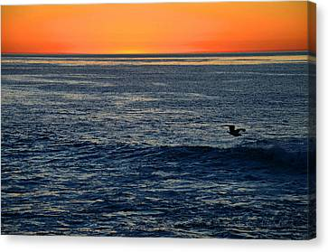 After The Sunset Glow In La Jolla Canvas Print by Sharon Soberon