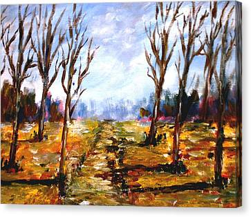 Afterblown Forrest Canvas Print by Constantinos Charalampopoulos