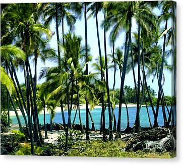 Afternoon At Kakaha Kai Canvas Print by Kurt Van Wagner