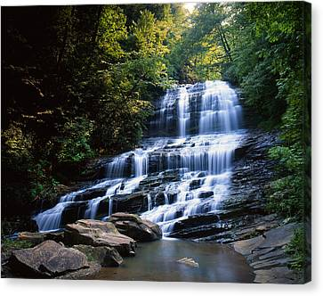 Afternoon At Pearson's Falls Canvas Print by Ray Mathis