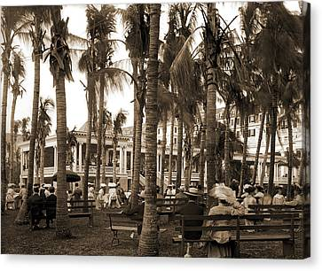Royal Poinciana Canvas Print - Afternoon Concert Hour, Royal Poinciana, Palm Beach, Fla by Litz Collection