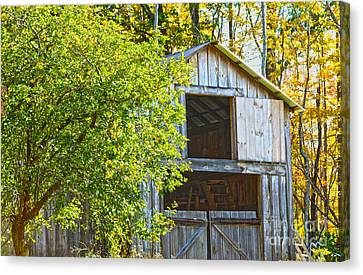 Afternoon Delight Canvas Print by A New Focus Photography
