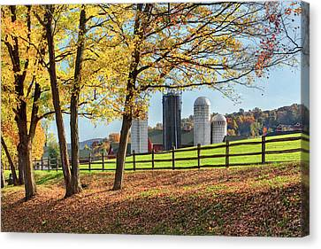 Afternoon Delight Canvas Print by Bill Wakeley