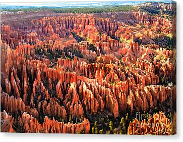 Afternoon Hoodoos Canvas Print by Robert Bales