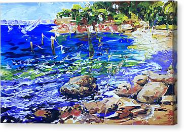 Afternoon Hues Nielsen Park Sydney Canvas Print by Shirley  Peters