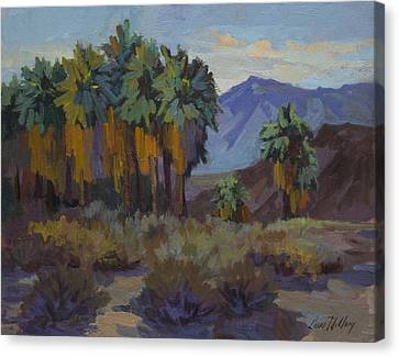 Afternoon Light At Thousand Palms Canvas Print by Diane McClary