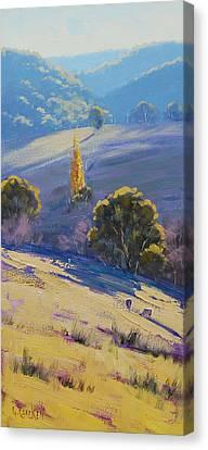 Afternoon Light Grazing Canvas Print by Graham Gercken