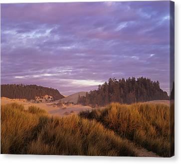 Afternoon Light Warms The Umpqua Dunes Canvas Print by Robert L. Potts
