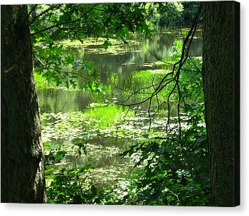 Canvas Print featuring the photograph Afternoon Reflections by Bruce Carpenter