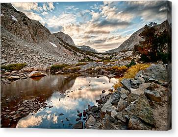 Afternoon Reflections Canvas Print by Cat Connor