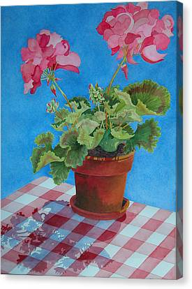 Afternoon Shadows Canvas Print by Mary Ellen Mueller Legault