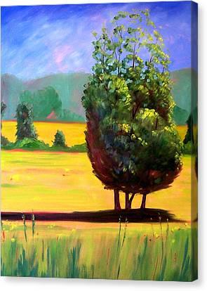 Afternoon Sun Canvas Print by Nancy Merkle