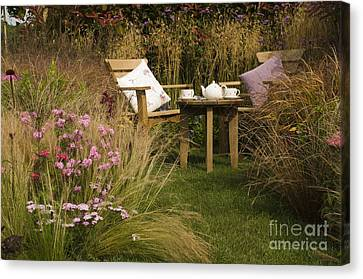 Afternoon Tea Canvas Print by Anne Gilbert