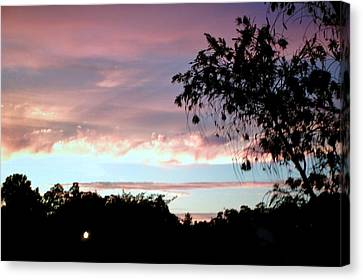 Canvas Print featuring the photograph Against The Blue Sky by Yolanda Rodriguez