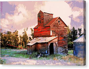 Against The Grain Canvas Print by Marty Koch