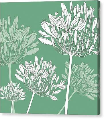 Agapanthus Canvas Print - Agapanthus Breeze by Sarah Hough