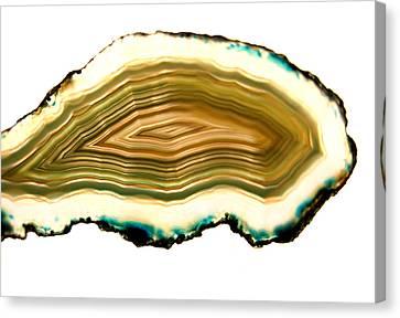 Agate 1 Canvas Print