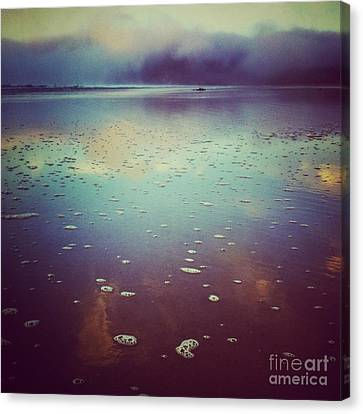 Agate Beach Reflections Canvas Print by Andrea Gingerich