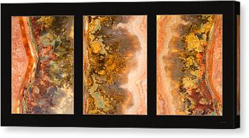 Agate Triptych 2 Canvas Print by Leland D Howard