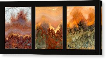 Agate Triptych 3 Canvas Print by Leland D Howard