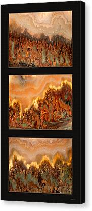 Agate Triptych 4 Canvas Print by Leland D Howard
