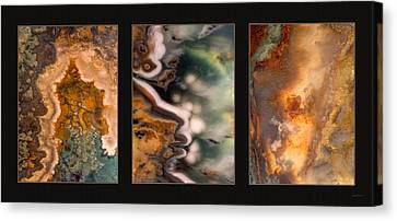 Agate Triptych 5 Canvas Print by Leland D Howard