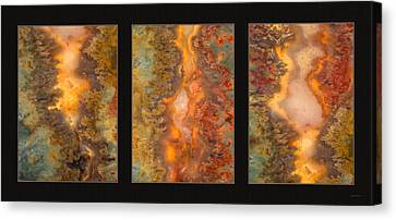 Agate Triptych 6 Canvas Print by Leland D Howard