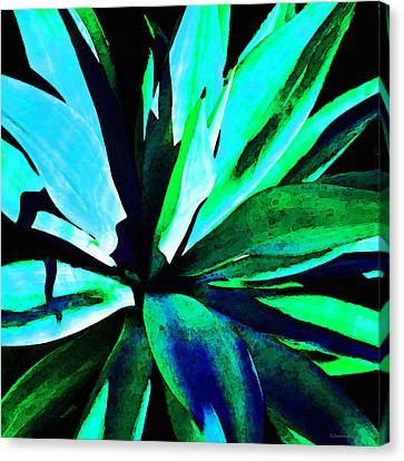 Agave - High Contrast Art By Sharon Cummings Canvas Print
