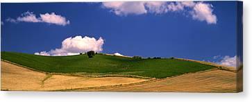 Agricultural Field, Ronda, Malaga Canvas Print