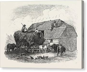 Agricultural Pictures  Thatching Canvas Print