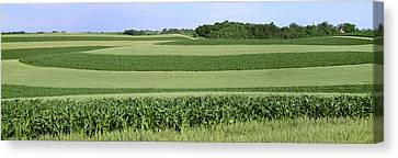 Agriculture - Contour Strips Of Mid Canvas Print by Timothy Hearsum