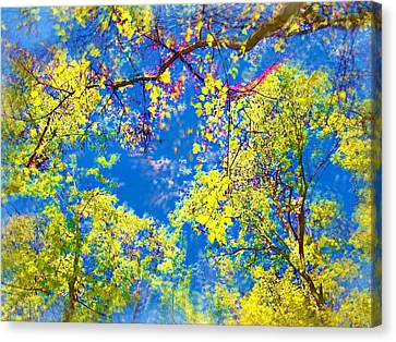 Air Brushed Spring Trees Canvas Print