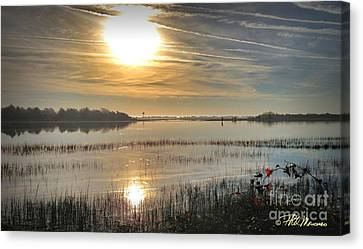 Canvas Print featuring the photograph Airlie Road Morning by Phil Mancuso
