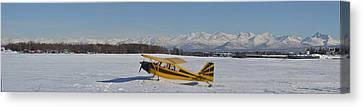 Airplane On Ice Canvas Print