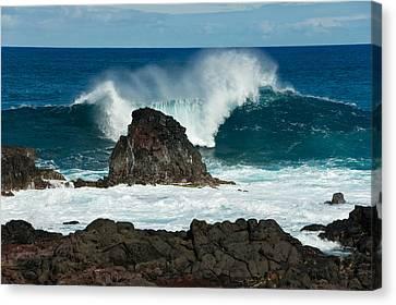 Akahanga Wave 2 Canvas Print