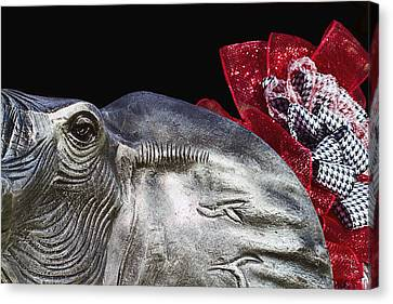 Alabama Football Mascot Canvas Print by Kathy Clark
