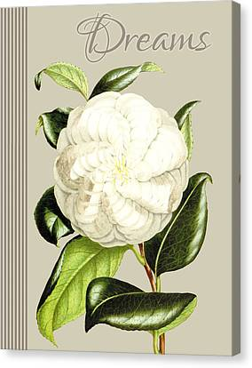 Alabaster Blossom E Vertical Canvas Print by Gail Fraser