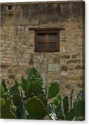 Alamo Window Canvas Print by Jemmy Archer
