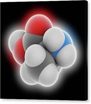 Alanine Molecule Canvas Print by Laguna Design