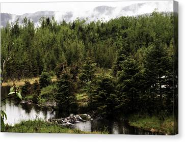 Alaska Beauty 2 Canvas Print by Davina Washington